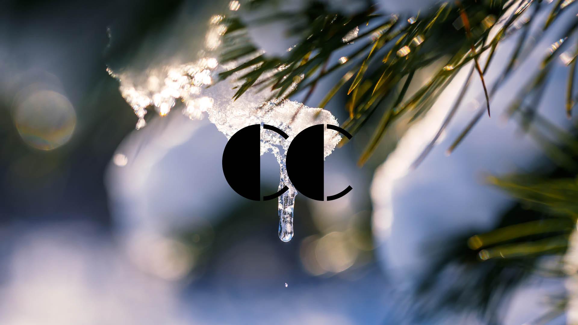 Snø og is som smelter fra trærne