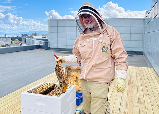 Bikuber på taket av CC Gjøvik